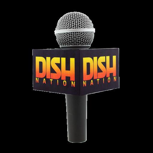 DISH NATION MIC FLAG